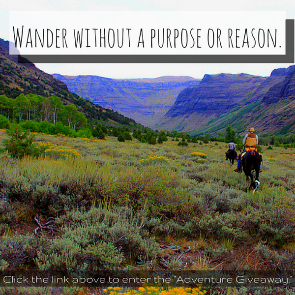 wander without a purpose or reason quote