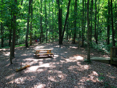 hiking - picnic table under trees