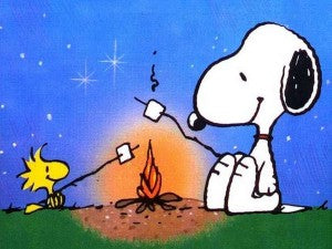 Snoopy Camping with Woodstock