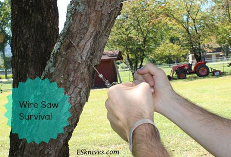 Wire Saw Survival