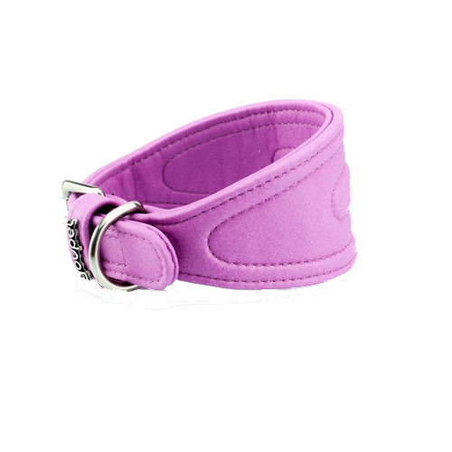 Collar Galgo Dared Violeta