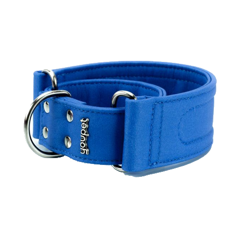 Collar Galgo Dared Martingale Azul