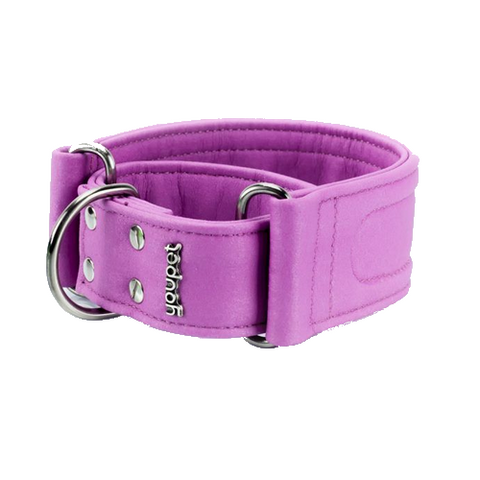 Collar Galgo Dared Martingale Violeta