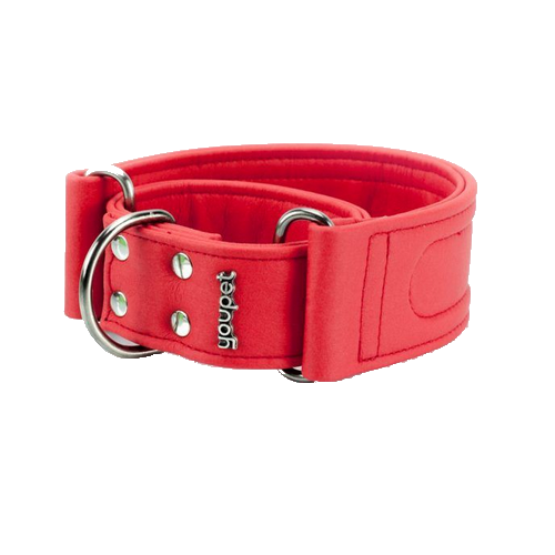 Collar Galgo Dared Martingale Rojo