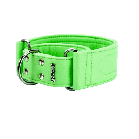 Collar Galgo Dared Martingale Verde