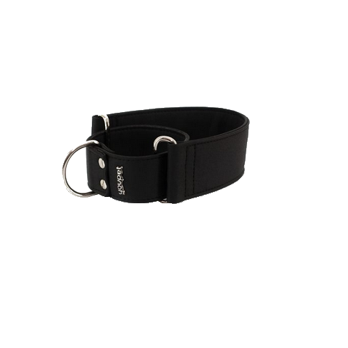 Collar Galgo Elements Martingale Negro