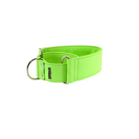 Collar Galgo Elements Martingale Verde