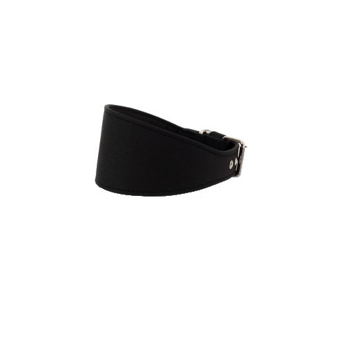Collar Galgo Elements Negro