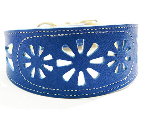 Collar Galgo Filigrana Azul