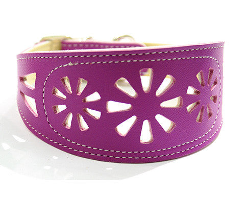 Collar Galgo Filigrana Morado