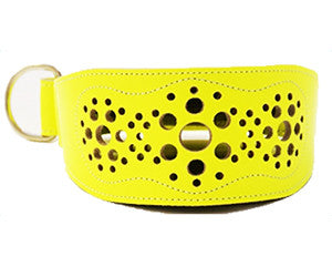 Collar Galgo Filigrana Amarillo