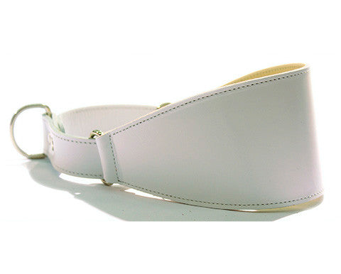 Collar Galgo Martingale Blanco
