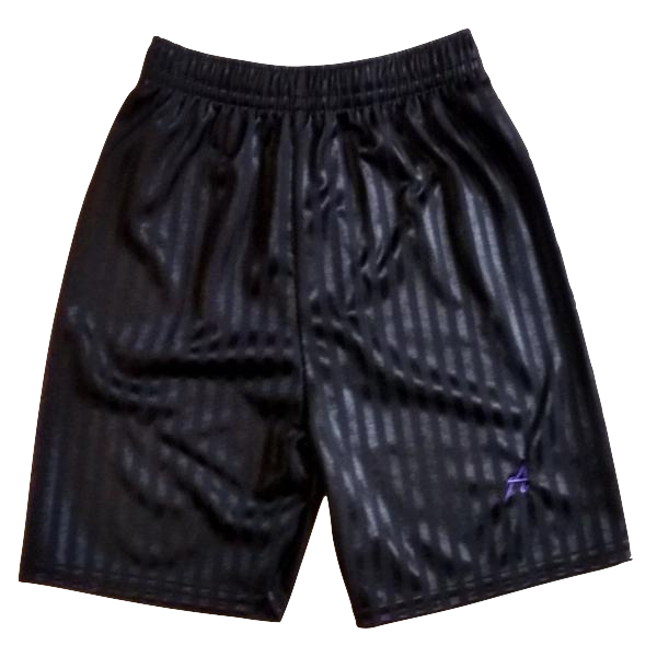 Alderbrook Secondary School PE Shorts