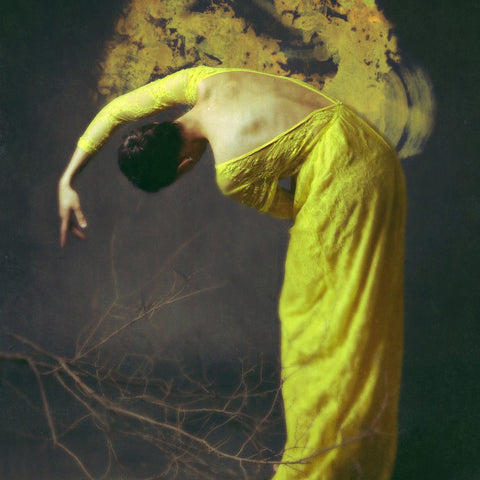 Of Desolate Amber - Josephine Cardin diasec