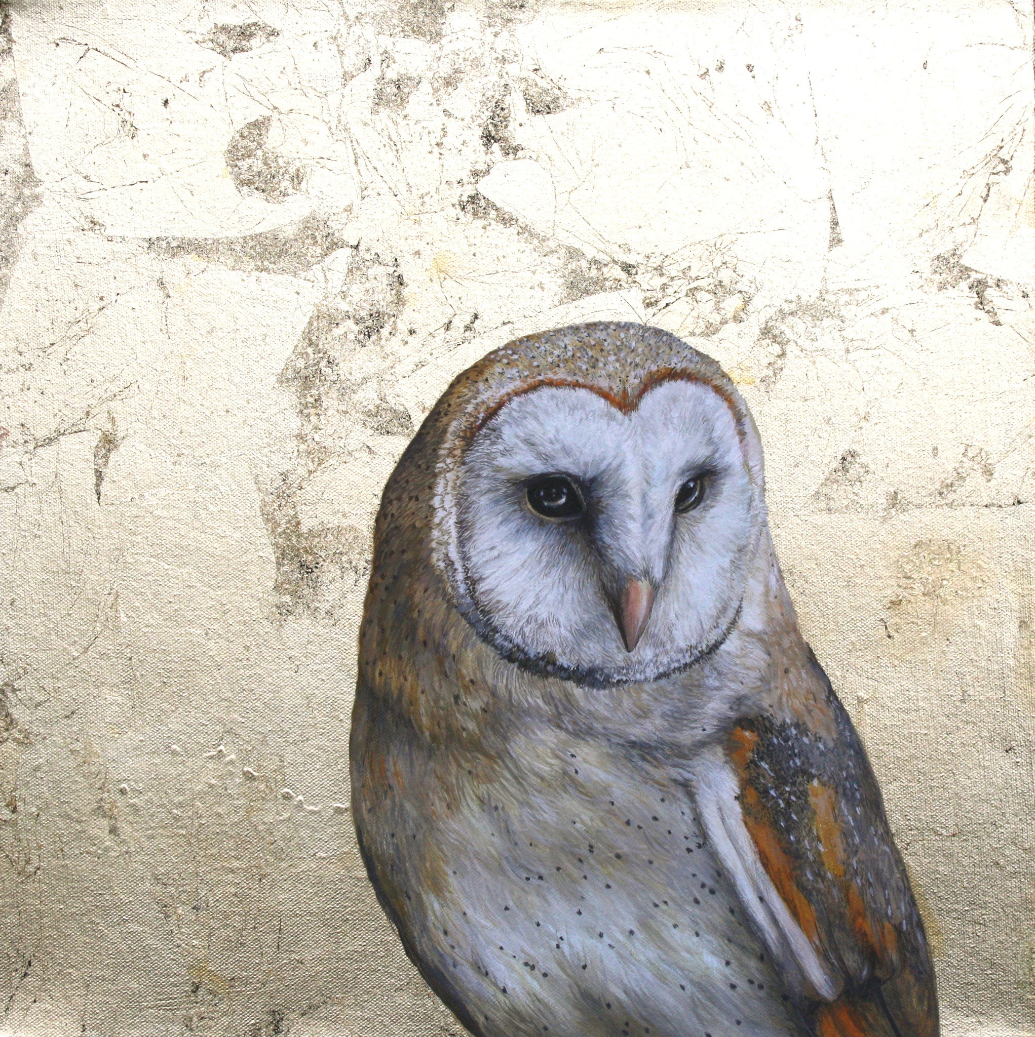 Spirit of the Night - Louise McNaught