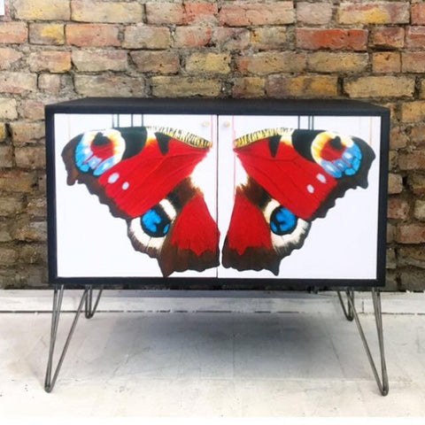 Butterfly Wing Cabinet - Louise McNaught