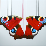 Infatuation - Louise McNaught