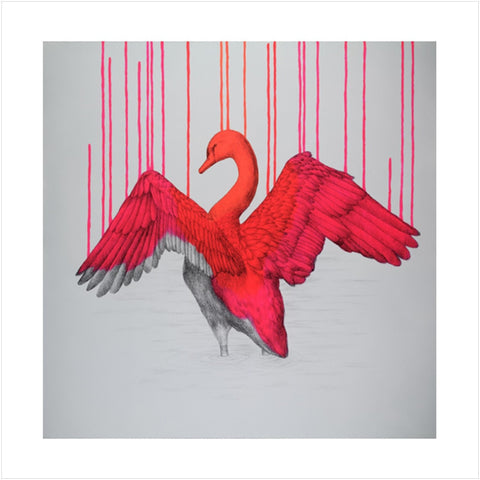 Beautifully Wild - Louise McNaught