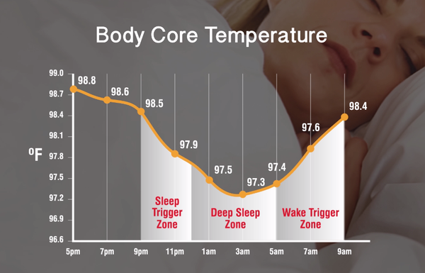 Body core temperature at night by BedJet