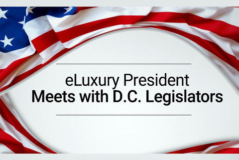 eLuxury President Meets with D.C. Legislators