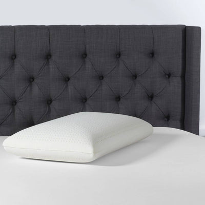 Beautyrest Latex Foam Pillow