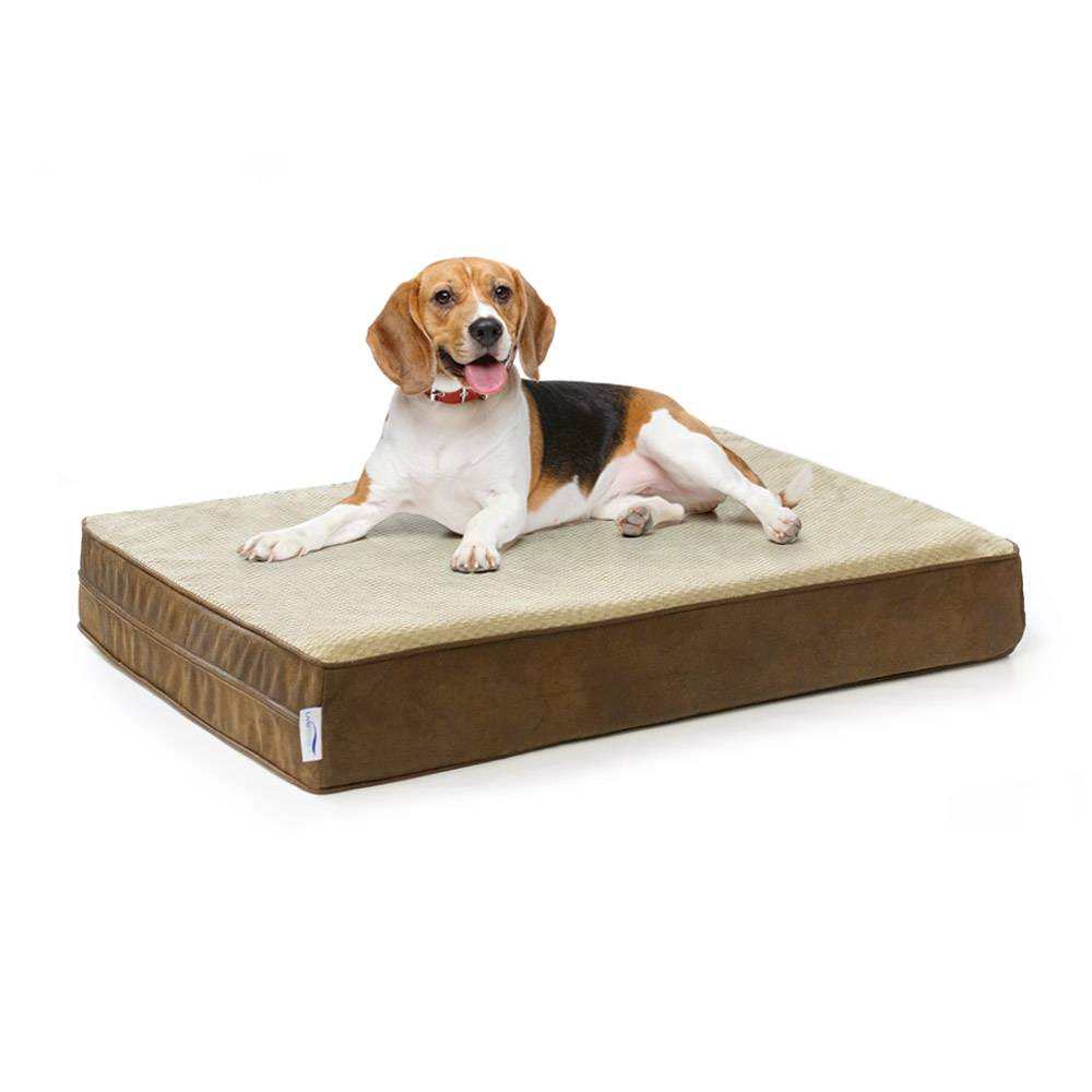 Orthopedic Memory Foam Dog Bed w/ Stain Repellant LiveSmart Technology