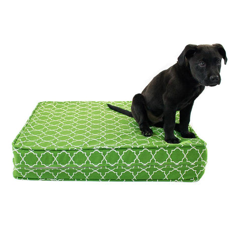 Green 5 Thick Soft/Firm Reversible Comfort Gel Memory Foam Orthopedic Dog Bed