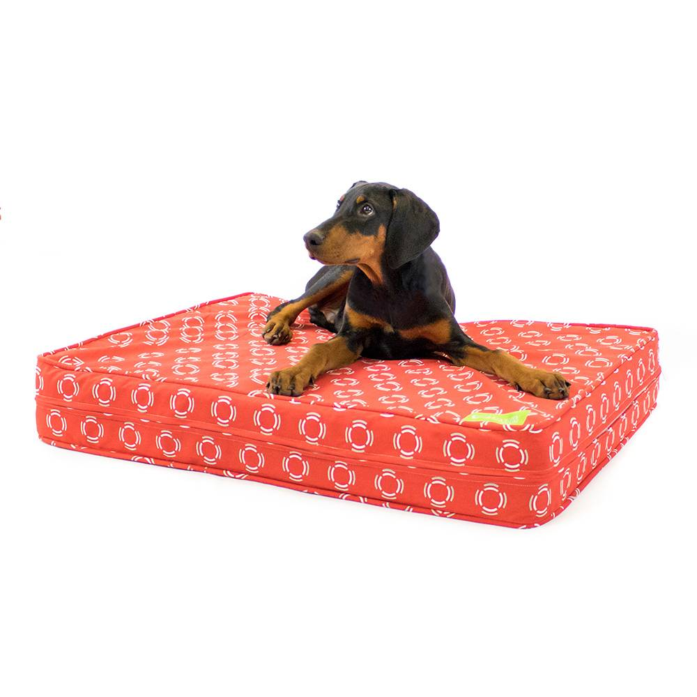 "Red Modern 5"" Thick Soft/Firm Reversible Gel Memory Foam Orthopedic Dog Bed"