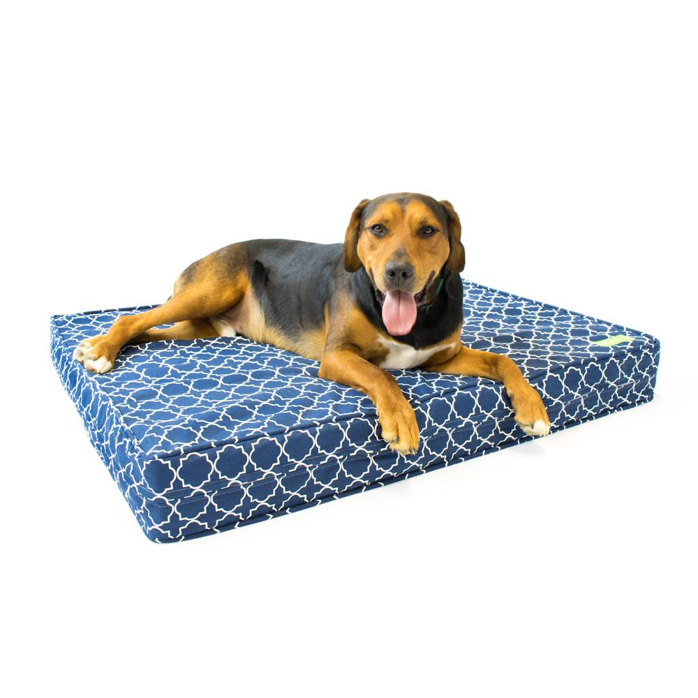 "Royal Blue 5"" Thick Soft/Firm Reversible Comfort Gel Memory Foam Orthopedic Dog Bed"