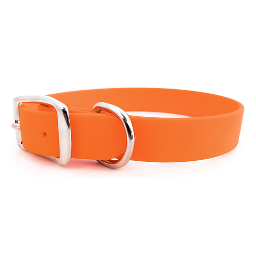 Rita Bean Waterproof Standard Buckle Dog Collar - Orange