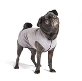 Sun Shield Dog Sun Protection T-shirt - Gray Heather