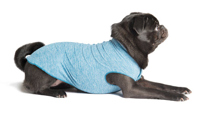 Sun Shield Dog Sun Protection T-shirt - Blue Heather