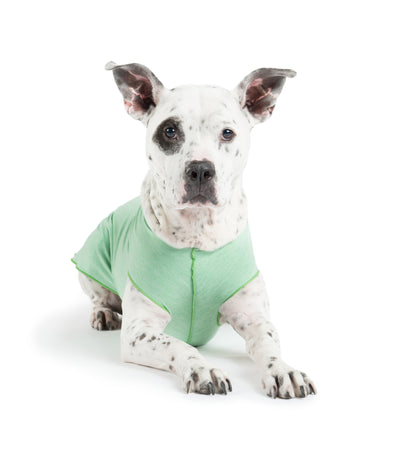 Sun Shield Dog Sun Protection T-shirt - Light Green Heather