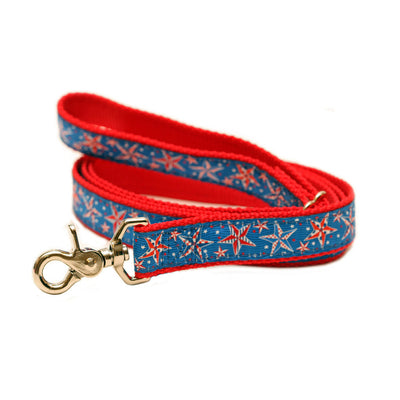 Rita Bean Engraved Buckle Personalized Dog Collar - American Stars