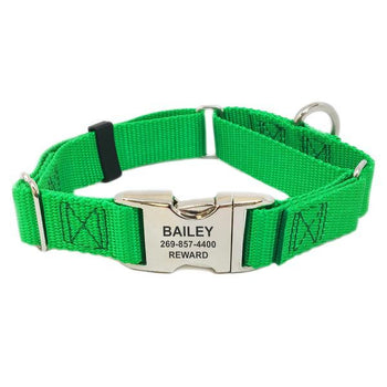 Rita Bean Engraved Buckle Personalized Martingale Style Dog Collar - Nylon Webbing (Bright Green)