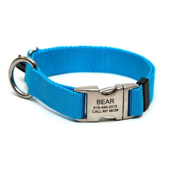 Rita Bean Engraved Buckle Personalized Dog Collar - Nylon Webbing (Turquoise Blue)