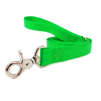 Rita Bean Dog Leash - Nylon Webbing (Bright Green)