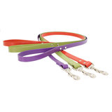 Green, Terracotta and Purple Leashes