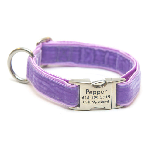 Rita Bean Engraved Buckle Personalized Dog Collar - Velvet (Lavender)