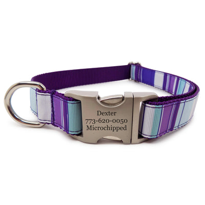 Rita Bean Engraved Buckle Personalized Dog Collar - Mod Stripe (Grape)