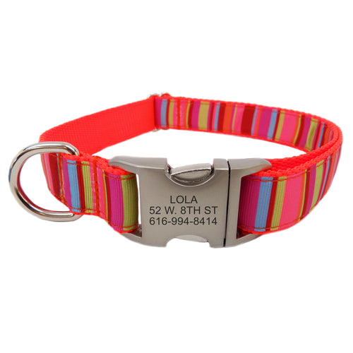 Rita Bean Engraved Buckle Personalized Dog Collar - Orange Stripe