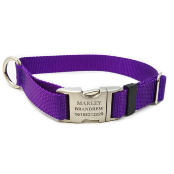 Rita Bean Engraved Buckle Personalized Dog Collar - Nylon Webbing (Purple)