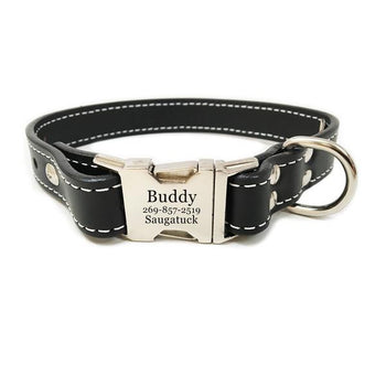Rita Bean Heavy Duty Engraved Buckle Leather Dog Collar - Black
