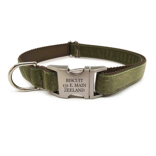 Rita Bean Engraved Buckle Personalized Dog Collar - Velvet (Green)