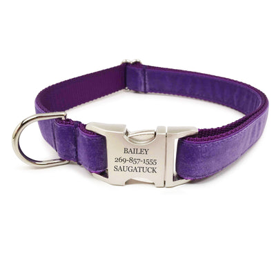 Rita Bean Engraved Buckle Personalized Dog Collar - Velvet (Purple)