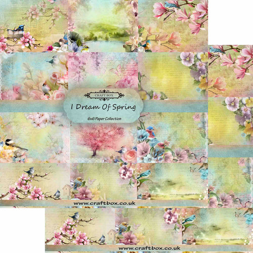 I Dream of Spring 6x6 Paper Collection DUO PACK