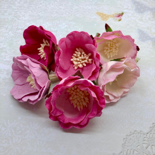 BACKORDER: Mulberry Peonies - Pinks