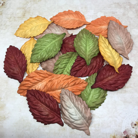 Set of Mulberry Leaves - Autumn