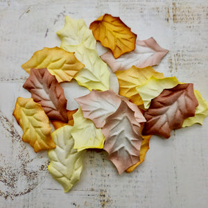 Set of Mulberry Leaves - Holly Autumn