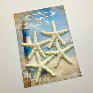 Seaside Stories - Resin Starfish x4